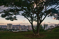 View of Honolulu Skyline from Punchbowl Crater