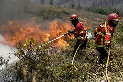 June 21, 2017 - Portugal - Gois, 21/06/2017 - Bombeiros combatem em Colmeal, a frente activa do Incêndio de Pedrógão Grande, que lavra desde dia 17 e vitimou 64 pessoas, queimando mais de 30000 Ha. (Credit Image: © Atlantico Press via ZUMA Wire)