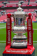 The Emirates FA Cup on display at Wembley Stadium ahead of the FA Cup semi-final match between Watford and Wolverhampton Wanderers at Wembley Stadium in London England on 7 April 2019.