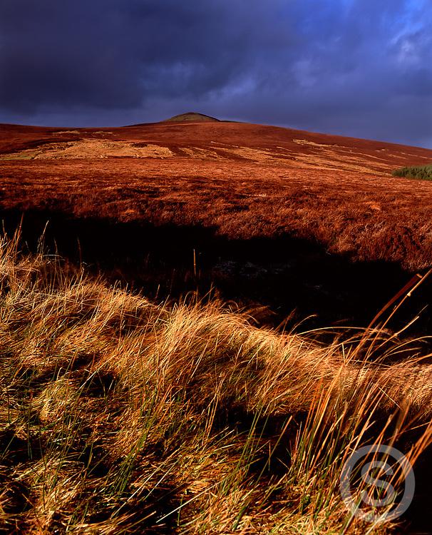 Photographer: Chris Hill, Knocklayd Mountain, Ballycastle, County Antrim