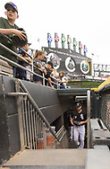 CHICAGO - JUNE 14:  Lucas Giolito #27 of the Chicago White Sox enters the bullpen prior to the game against the New York Yankees on June 14, 2019 at Guaranteed Rate Field in Chicago, Illinois.  (Photo by Ron Vesely)  Subject:  Lucas Giolito
