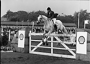 Shell Sponsored Events At The Dublin Horse Show.(R39).1986..07.08.1986..08.07.1986..7th August 1986..At the Horse Show Shell sponsored both the Speed and Power competition and The Puissance..The Speed and Power event was won by Hap Hanson riding 'Gambrinus'. The Puissance was shared by Capt John Ledingham (Irl) on 'Kilcoltrim' and Nick Skelton (GB) on 'Raffles Apollo' who both cleared the high wall at 7feet...Image shows Conrad Homfeld (USA) on 'Abdullah' taking part in the Speed and power event.