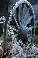 Frost on a wagon wheel..