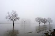 Bij Lathum treedt de IJssel buiten haar oevers.<br /> <br /> High tide at the river IJssel near Lathum.
