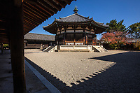 6. Horyuji Temple 法隆寺 was founded by Prince Shotoku in 607. The entire complex has been preserved making Horyuji a sort of museum of the building styles from the 7th century onwards.  Enclosed by roofed corridors, the Western Precinct is home to the world's oldest surviving wooden structures built during the Asuka Period and have never suffered damage or destruction. The Eastern Precinct showcases the octagonal Yumedono Hall of Dream Visions with its statue of Guze Kannon which had been kept under wraps for centuries until 1884.