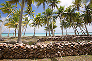 Copra plantation, Takapoto, Tuamotu Islands, French Polynesia<br />