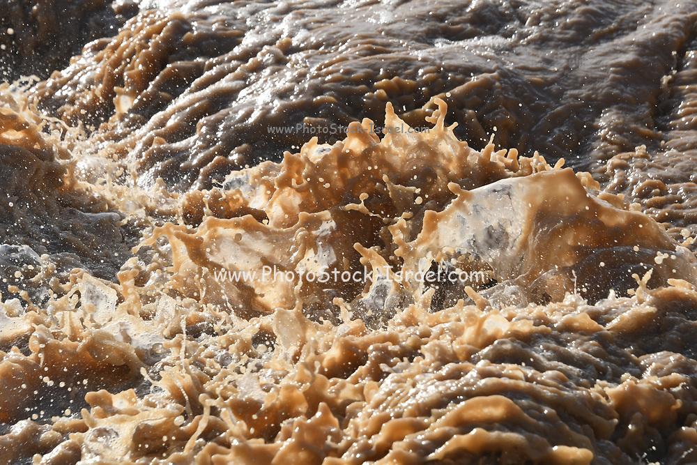 Flash Flood in the Negev Desert, Israel. Photographed in Wadi Tzeelim after heavy rainfall