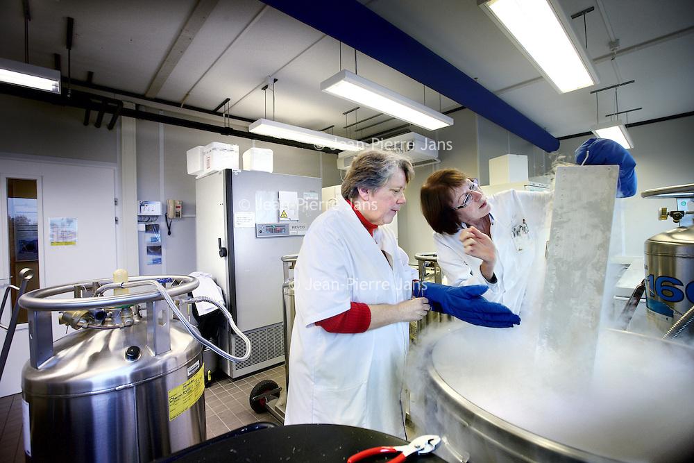 Nederland, Amsterdam , 27 oktober 2010..De Biobank met stikstofvaten op de kankeronderzoek afdeling van VUmc met links José Koevoets..The Biobank with nitrogen tanks on the cancer department of the VUmc (university hospital of Amsterdam).