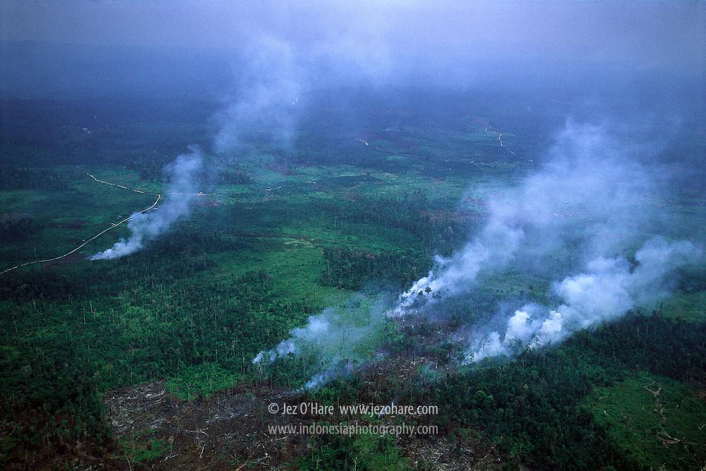 Slash & burn forest fires, Riau, Sumatra, Indonesia.