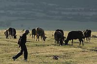 "Albanian ""cowboy"". Lake Prespa National Park, Albania June 2009"