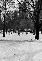 Central Park in the snow Manhattan New York