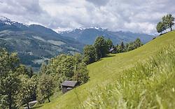 THEMENBILD - eine Bergwiese mit Bäumen und einem Heustadl, aufgenommen am 30. Mai 2020 in Bruck an der Glocknerstrasse, Oesterreich // a mountain meadow with trees and a hay barn, in Bruck an der Glocknerstrasse, Austria on 2020/05/30. EXPA Pictures © 2020, PhotoCredit: EXPA/Stefanie Oberhauser