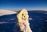 Snowman, Mauna Kea, Island of Hawaii