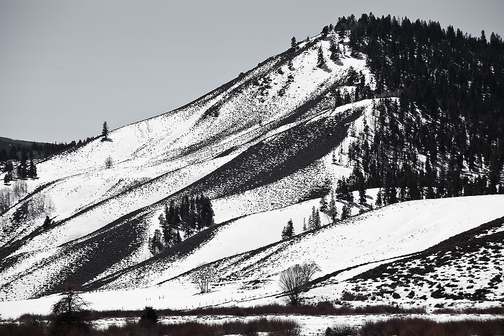 Abstract patterns made by snow, rolling hills and sparse trees along Highway 50 near Sargents, Colorado.