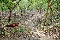 B-52 Bomb Crater From Vietnam War