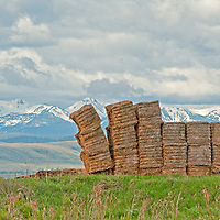 A haystack teeters in a field in Montana's Gallatin Valley, near Bozeman.  Behind are the Tobacco Root Mountains.