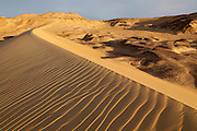Early morning sunlight illuminates a sand dune near Bahariya Oasis, Western Desert, Egypt