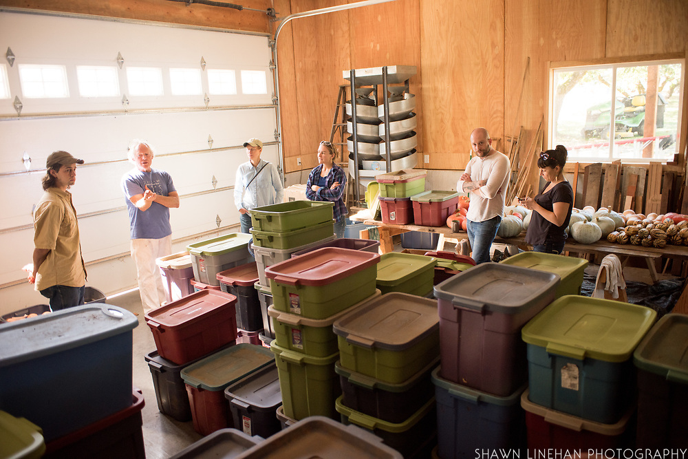 Frank Morton discusses seed keeping with Alex Wenger, Julie Dawson, and Claire Luby, Timothy Wastell and Lane Selman at Wild Garden Seed farm in Philomath, OR.