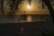 Redington,  Florida, USA., Wednesday,  3rd October 2018,   Sunset, Beach Runner, passes the Pier, Redington Beach, Florida,  © Peter Spurrier