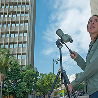 Biologist Courtney McCammon surveys the horizon for raptors circling above Wilshire Boulevard in Los Angeles, CA. A hawk nest sits on a window ledge on building to left.