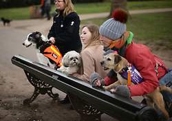(left to right) Gayle Wilde, 39, from Kilsyth in Lanarkshire, with her Border Collie Taz; Hannah Gates, 19, from Hazlemere in Buckinghamshire, with her Shih Tzu Buttons, and Vanessa Holbrow, 47, from Burnham on Sea in Somerset, with her Border Terrier Sir Jack Spratticus, during a photocall by The Kennel Club in Green Park, London, to announce the finalists for the Crufts dog hero competition, Friends for Life 2018.