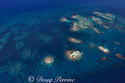aerial view of the Silk Cayes, three sand and coral cays ( small islands ), and patch reefs, inside the southern Belize barrier reef, Gladden Spit and Silk Cayes Marine Reserve, off Placencia, Belize, Central America ( Caribbean Sea )