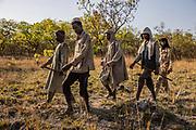 Des éleveurs nomades soudanais marchent dans la réserve naturelle de Chinko. Après avoir franchi les frontières de l'aire protégée avec leurs boeufs, African Parks leur demande de modifier leur itinéraire.