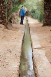 Pam tree irrigation, Erg Chebbi, Saharan Desert, Morocco
