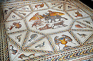 African animals and fish from the 3rd century Roman mosaic villa floor from Lod, near Tel Aviv, Israel. The Roman floor mosaic of Lod is the largest and best preserved mosaic floor from the levant region along the eastern Mediterranean coast. It is unclear whether the owners were Jewish, Christian or pagan but either way they would have been wealthy to own such a magnificent floor. The Shelby White and Leon Levy Lod Mosaic Centre, Lod, Israel. .<br /> <br /> If you prefer to buy from our ALAMY STOCK LIBRARY page at https://www.alamy.com/portfolio/paul-williams-funkystock/greco-roman-sculptures.html . Type -    lod  - into LOWER SEARCH WITHIN GALLERY box - Refine search by adding a subject, place, background colour, museum etc.<br /> <br /> Visit our ROMAN WORLD PHOTO COLLECTIONS for more photos to download or buy as wall art prints https://funkystock.photoshelter.com/gallery-collection/The-Romans-Art-Artefacts-Antiquities-Historic-Sites-Pictures-Images/C0000r2uLJJo9_s0