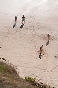 Family cricket on the beach
