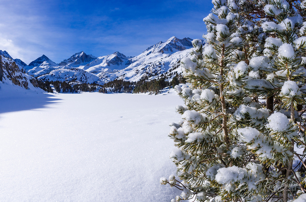 Sierra crest from Long Lake in winter, John Muir Wilderness, Sierra Nevada Mountains, California  USA
