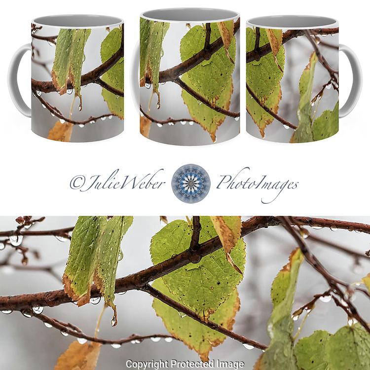 Coffee Mug Showcase 53 - Shop here:  https://2-julie-weber.pixels.com/products/1-after-the-snow-2-julie-weber-coffee-mug.html