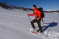 Snowshoeing, mountain guide Umberto Esposito, Rewilding Europe, Central Apennines, Italy