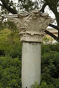 Corinthian Ionic capitals, Roman Period, Israel