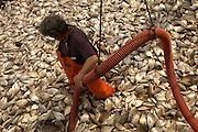 Little compton, RI. Trap Fishing operation
