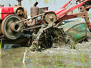 Old tractor farming rice in a paddy field in southern Sri Lanka