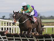 Fairyhouse Races 011213