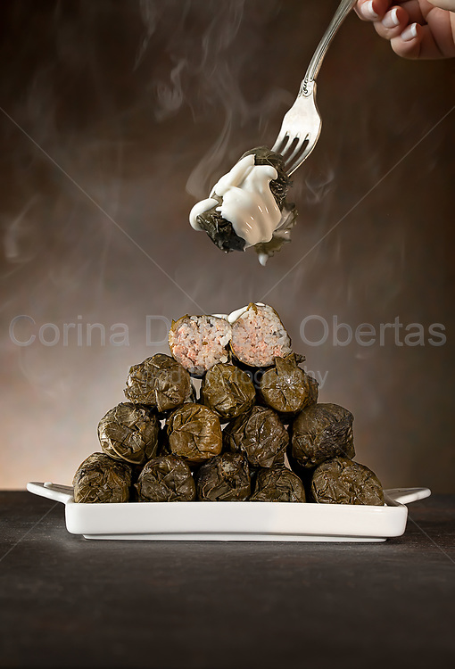 A plate with vine leaf rolls. A vine leaf roll is a dish consisting of cooked grape-vine leaves wrapped around a variety of fillings.