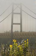 © 2002 Randy Vanderveen, all rights reserved.Grande Prairie, Alberta.Wild flowers add a splash of colour as the Dunvegan Bridge is shrouded in fog.