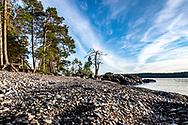 JÄMTLAND 2020<br /> Kajaktur runt Bynäset tillsammans med Ellinor, Anna, Kjell och Christer.<br /> <br /> Foto: Per Danielsson/Projekt.P