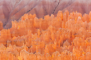 Bryce Amphitheatre, seen from Bryce point, Bryce Canyon National park, Utah, United States of America