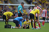 Etienne Capoue of Watford receives treatment after being fouled by Oriol Romeu of Southampton. Barclays Premier League, Watford v Southampton at Vicarage Road in London on Sunday 23rd August 2015.<br /> pic by John Patrick Fletcher, Andrew Orchard sports photography.