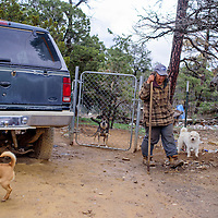 050515       Cable Hoover<br /> <br /> Claudia Sanders tends to a group of dogs at her home in Candy Kitchen Tuesday. Sanders said there were still about 15 dogs on her property but she hoped to keep only four.