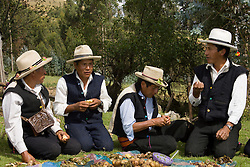 "Villagers in traditional clothing eat at ""pachamanca"" feast, Vicos, Peru, South America  MR"
