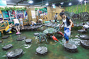 Chinese interact with marine life at the Shanghai Natural Wild Insect Kingdom in Shanghai, China