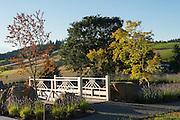 Japanese Garden, Saffron Fields Vineyard, Yamhill, Willamette Valley, Oregon