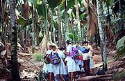 School children doing geography fieldwork in the rainforest at Vallee de Mai national park, Praslin island, Seychelles