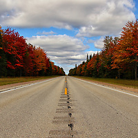 """""""Born to be Wild""""<br /> <br /> Heading down a rural highway in Michigan's Upper Peninsula during fall! Feel the chill in the air,and the wind on your face as you ride past the beautiful fall foliage!!<br /> <br />  Autumn Landscapes of Michigan by Rachel Cohen"""