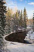 Snowy forest and sandstone cliffs along River Amata on cold, but sunny winter day, Gauja National Park (Gaujas Nacionālais parks), Latvia Ⓒ Davis Ulands   davisulands.com