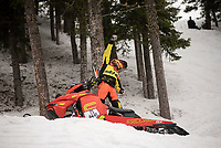 Mike Thompson, of Providence, Utah, celebrates after reaching the top of the hill climb course in his qualifying run of the Open Mod qualifiers Saturday during the 41st annual World Championship Snowmobile Hill Climb.